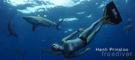 Evosat sponsors - Hanli Prinsloo (Freediver)